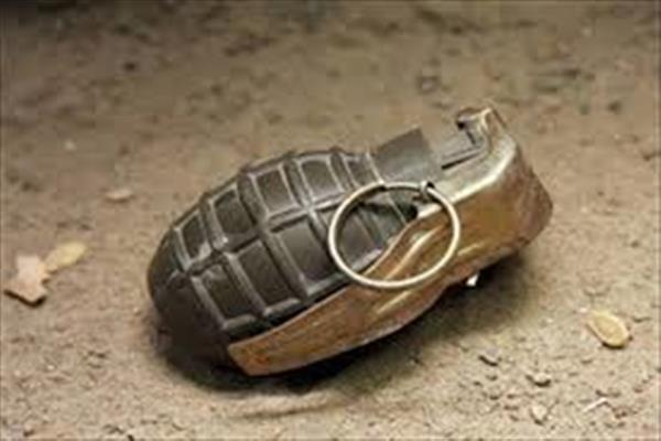 'Jaish distances itself from Tral Grenade attack, blames CRPF'