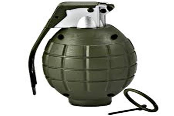 Police constable injured in grenade attack in Baramulla