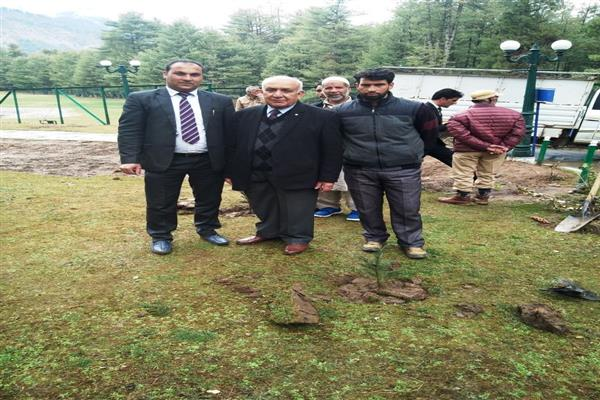 Grand Mumtaz Resorts Pahalgam kick-starts plantation drive