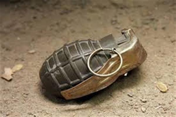 Two CRPF personnel injured in Sangrama in grenade attack: Police