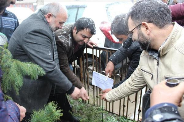 CUK VC launches plantation drive in varsity