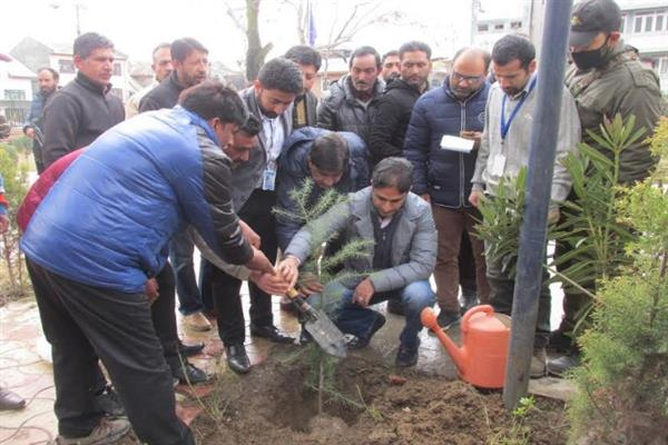 In Nouroz, SMC Mayor kick starts plantation drive