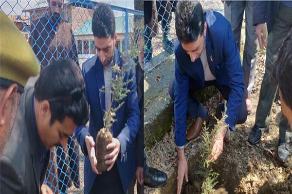 Plantation drive launched at Boys Hr Sec School Handwara