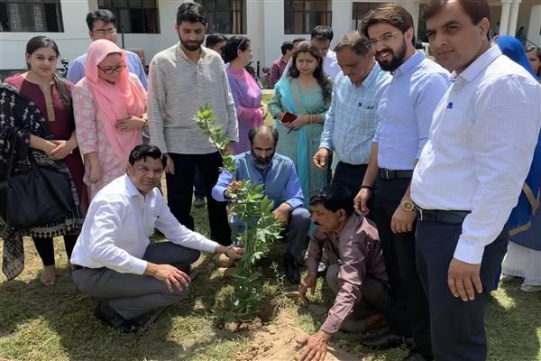 JK Finance and Accounts Society organizes plantation drive