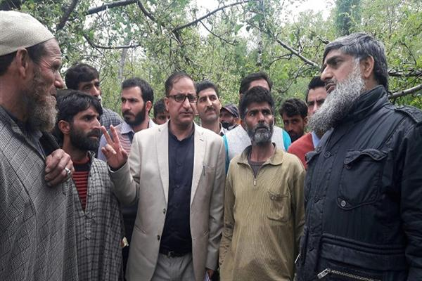 Director Horticulture visits hailstorm-affected areas