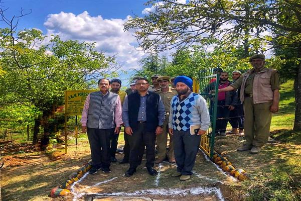 PCCF conducts extensive tour of north Kashmir forest divisions