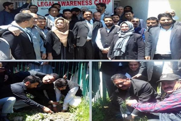 CJM launches plantation drive at court complex Handwara