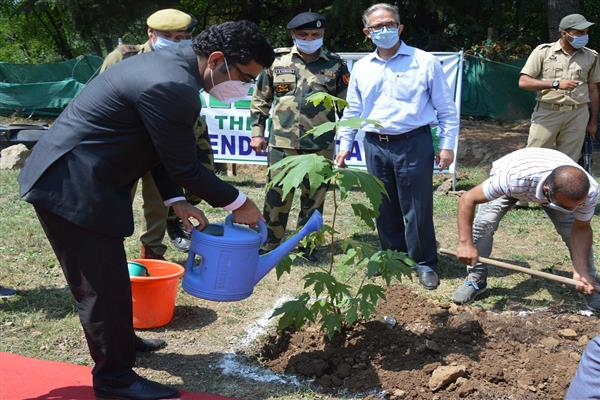 On Independence Day, Plantation Drive held in Srinagar