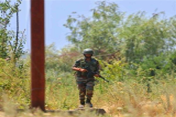 Kreeri, B'la Encounter : Two militants killed searches on