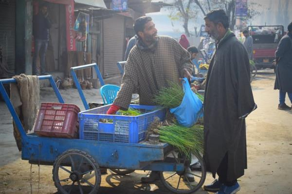 Palhallan Town of North Kashmir's Baramulla is famous for Onion Seeds